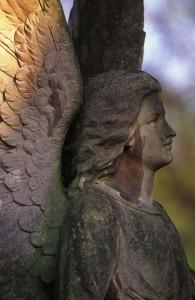 cemetery-499770_1280