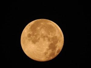 full-moon-872834_1280