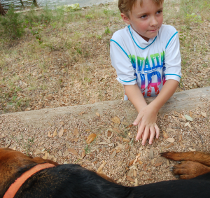 2013.Daniel.at.farm.dogs