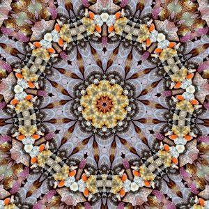 kaleidoscope_mandala-1248169_1280