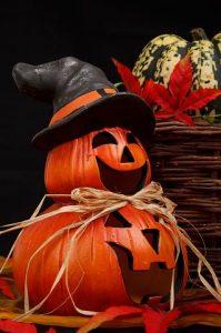 Halloween_Holy