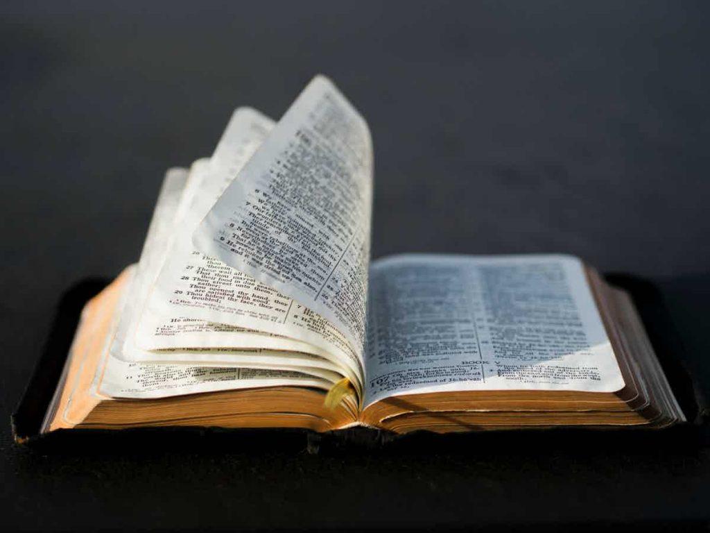 Elaine Cooper_Bible